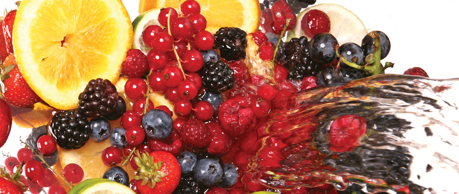 fruit3-1600