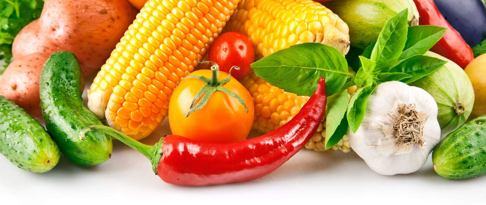 vegetable-1600